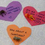 Plastic Animal Toy Valentine's Idea