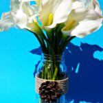 DIY Mason Jar Vase Craft Using Pine Cones