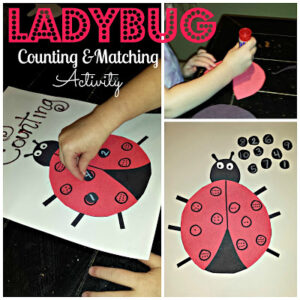 DIY: Ladybug Number Counting and Matching Activity/Craft For Kids