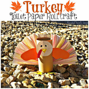 Turkey Toilet Paper Roll Craft For Kids (Thanksgiving Art Project)