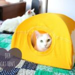 DIY Cat Tent Made with T-Shirts and Cardboard