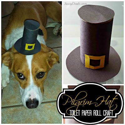 pilgrim-hat-craft-toilet-paper