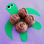 Egg Carton Turtle Craft for Kids