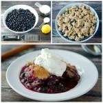Blueberry Crumble/Cobbler Dessert Recipe