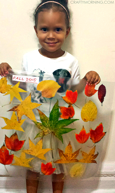leaf-collage-contact-paper-fall-kids-craft-