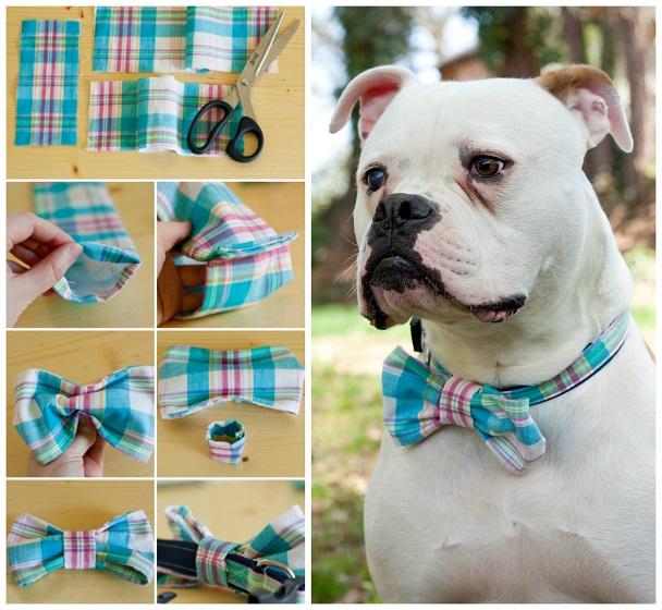 dog-collar-bow-tie-diy
