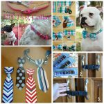 Clever Dog Collar Hacks