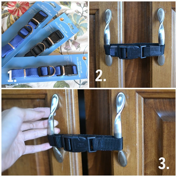 dog-collar-baby-proofing-hack