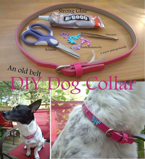 dog-collar-belt-hack