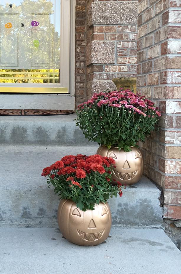 mum-flower-pumpkins