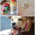 3-Ingredient Puppy Treat Recipe