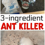 3 Ingredient Ant Killer Recipe