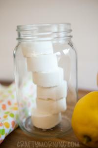 Lemon Toilet Fizzies (Homemade Cleaner)