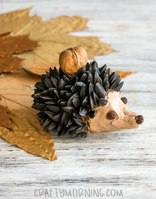 Sunflower Seed Hedgehog Craft