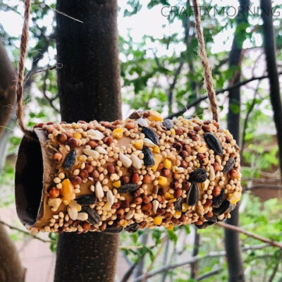 How to Make a Cardboard Tube Bird Feeder